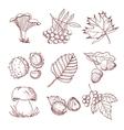 Hand Drawn Autumn Set vector image
