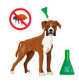 flea remedy product in container for dog vector image vector image