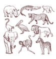 hand drawn of african animals vector image vector image