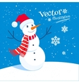 Snowman and snowflakes vector image vector image