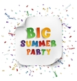 Big summer party poster vector image