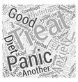 anxiety and panic attack Word Cloud Concept vector image vector image