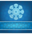 Christmas snowflake applique background EPS8 vector image vector image
