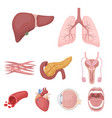 organs set icons in cartoon style big collection vector image vector image