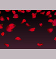 red sakura or rose falling petals vector image