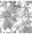 ficus palm leaves and tropical plants seamless vector image vector image