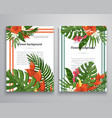 invitations or announcements tropical vector image vector image