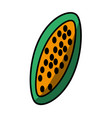 papaya tasty fruit fresh vector image vector image