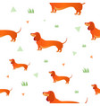 seamless pattern with red dog and graass vector image vector image
