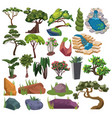 set trees and shrubs collection landscape vector image
