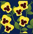 yellow pansy flower on navy blue background vector image vector image