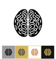 brain icon intelligence sign vector image vector image