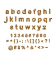 decorative English alphabet hand-drawn vector image