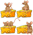 Four poses of mouse and cheese vector image vector image