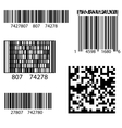 Product Barcode 2d Square Label vector image vector image