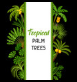 background with tropical palm trees exotic vector image vector image