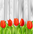 beautiful tulips flowers on wooden background vector image vector image