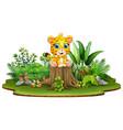 cartoon happy baby leopard sitting on tree stump w vector image vector image