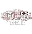 expertise word cloud concept vector image vector image
