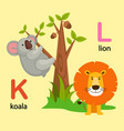 isolated alphabet letter k-koala l-lion vector image vector image