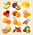 Set of colorful exotic fruit vector image vector image