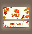 white blank with autumn maple leaves on vector image vector image