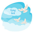 clear sky with flying birds vector image