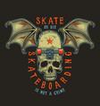 colour skateboarding print vector image vector image