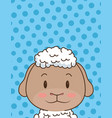 cute little sheep character vector image