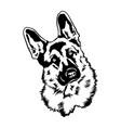 german shepherd svg dog svg files for cricut vector image vector image