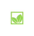 green leaf logo shape plant in square frame vector image vector image