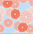 oranges pattern repetition design fruit food vector image
