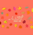 autumn special offer calligraphic logo with color vector image vector image