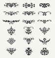 Calligraphic Decorative Design Elements Vintage Ve vector image vector image