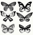 collection of realistic butterflies in vintage vector image vector image