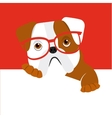 english bulldog design vector image