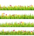 Green grass and beautiful spring flowers EPS 10 vector image