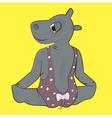 hippo in bodysuit making gymnastics vector image vector image