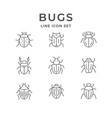 set line icons bugs vector image vector image
