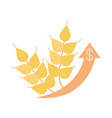 wheat agriculture product money up arrow rising vector image
