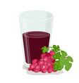 blue grape juice isolated on vector image