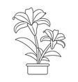 cute drawing plant vector image