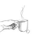 drawing hand holding cup tea wig tea bag vector image
