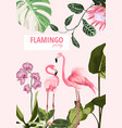 exotic pink flamingo birds with leaves and orchid vector image