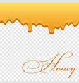 honey drip 3d seamless pattern bee drop syrup vector image