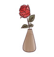 rose in a vases alone flower love vector image