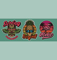 set colourful hawaii surfing with tiki mask vector image vector image