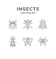 set line icons insects vector image
