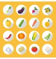 Vegetables Colored Isolated Icon Flat Set vector image vector image