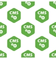 CMS pattern vector image vector image